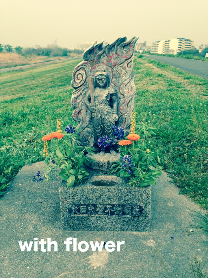 お不動さんとお花