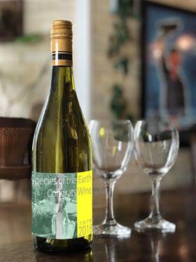 「大地の種」ラペルのBeyondオーガニックワイン